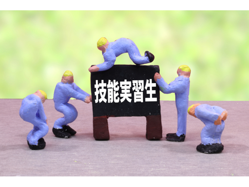 20210830_job